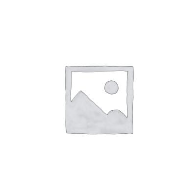 Хімічні технології рідкісних розсіяних елементів та матеріалів на їх основі (Магістр)