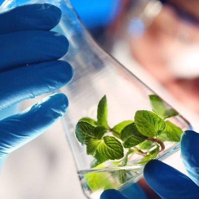 Промислова біотехнологія (Бакалавр)
