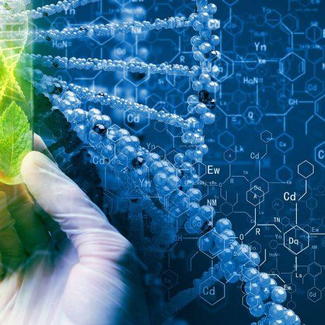 162-2-farmazevtychna-biotehnologija-bakalavr-3-