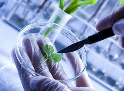 Спеціальність 162 - Біотехнології та біоінженерія - Абітурієнт вступ Харків
