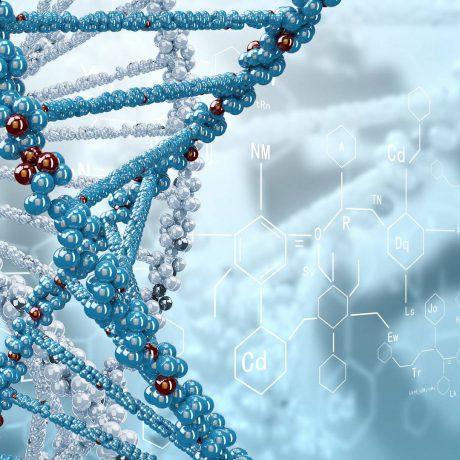 162-1-promislova-biotehnologija-bakalavr-2-