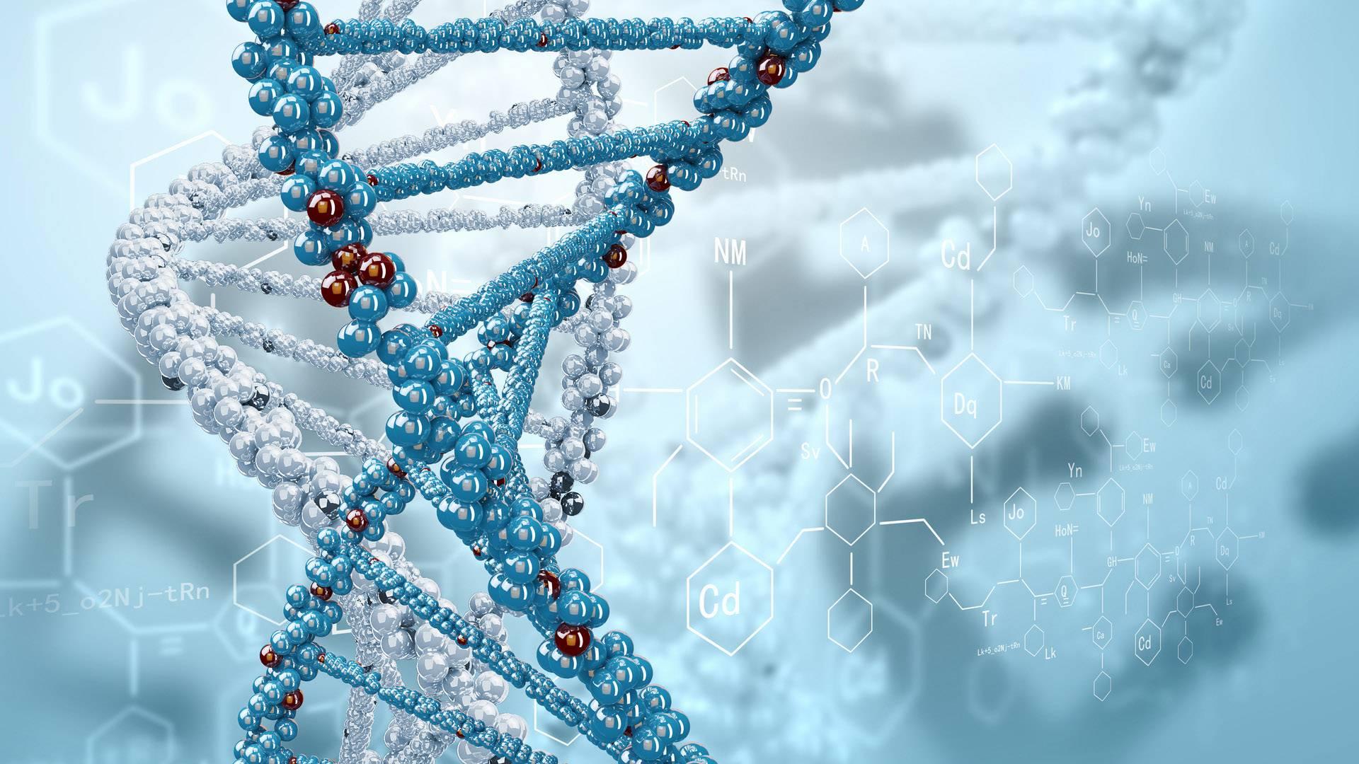 Промислова біотехнологія Бакалавр