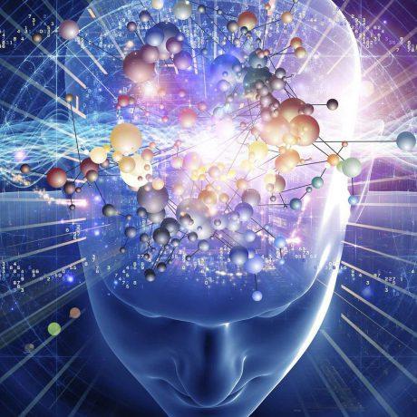 162-1-promislova-biotehnologija-bakalavr-4-