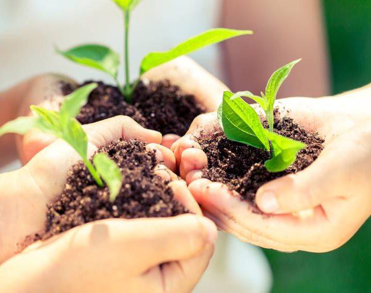 Цікава Екологія для школярів